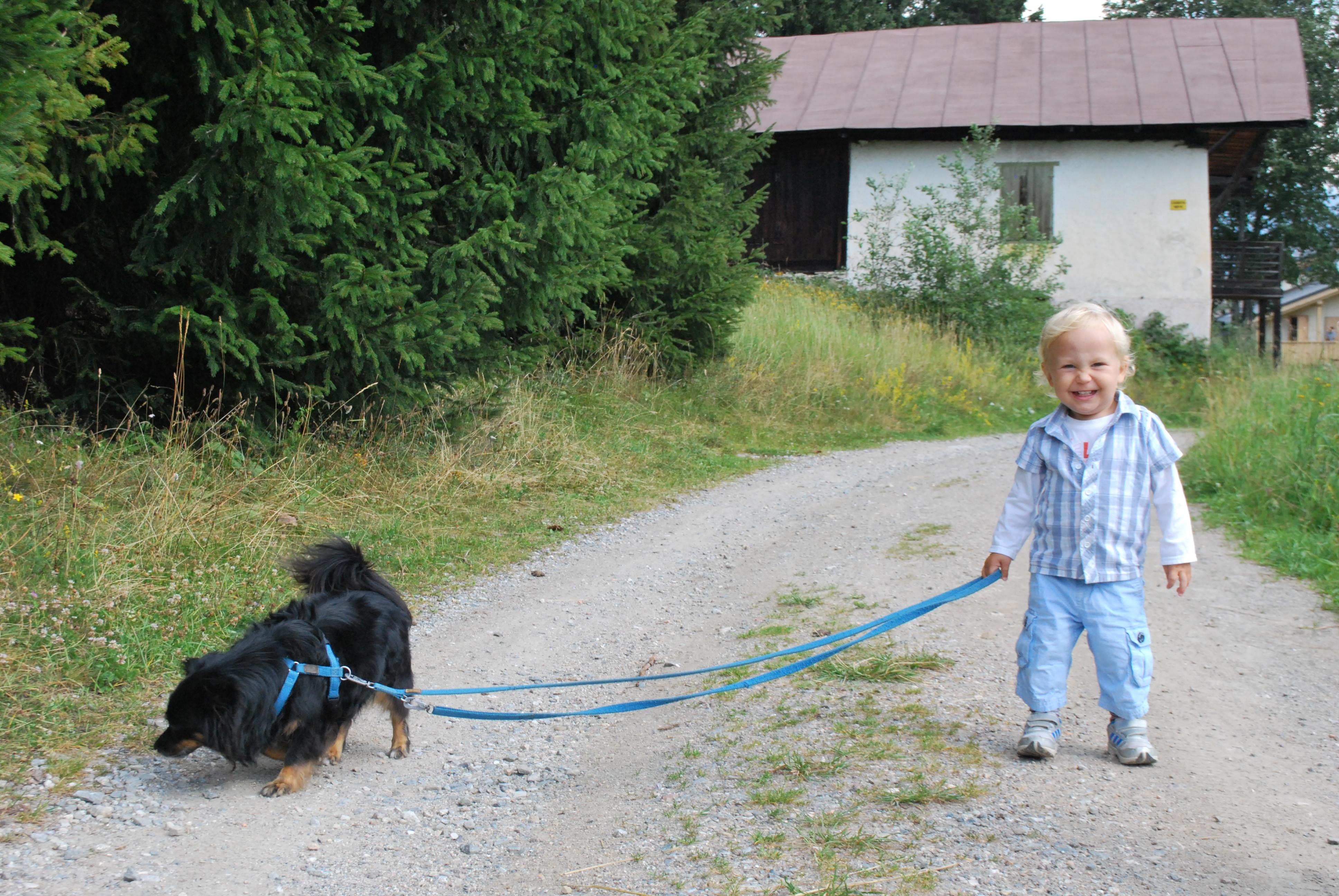 Un cane per Amico - Progetto didattico con l'Asilo BIM BUM BAM di Noventa Padovana