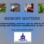 Memory first slide
