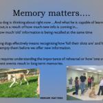 Memory slide pic 1
