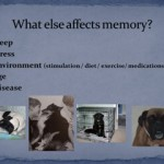 Memory slide pic 2