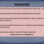 Memory slide pic 3